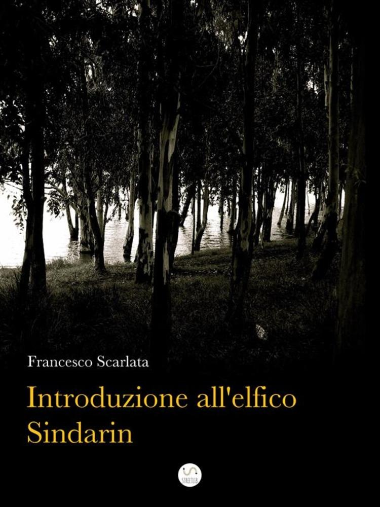 in linea Introduzione all'elfico Sindarin epub pdf
