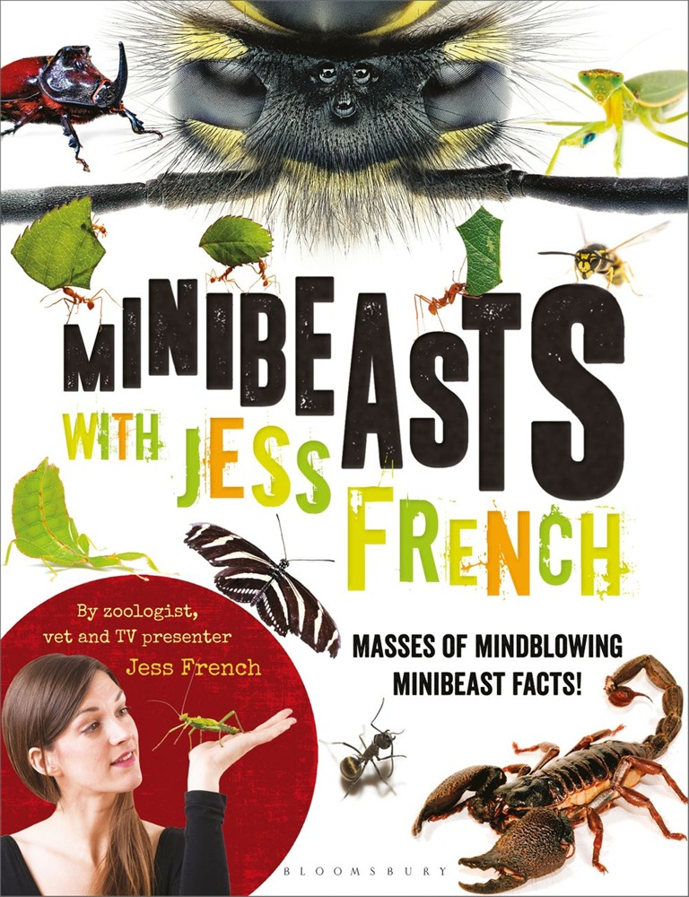Download Gratuito Minibeasts with jess french PDF