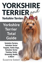 Yorkshire Terrier and Yorkshire Terriers