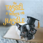 The The Tassel Is Worth the Hassle