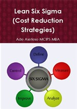 Lean Six Sigma (Cost Reduction Strategies)