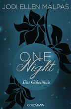 One Night - Das Geheimnis