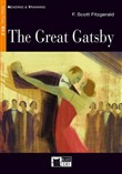 the great gatsby. book