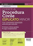 E2/A - Codice di procedura penale – Esplicato Minor