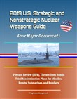 2019 u.s. strategic and n...