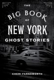 the big book of new york ...