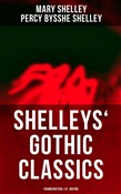 Shelleys' Gothic Classics: Frankenstein & St. Irvyne