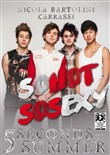 Una biografia omnimediale - 5 second of summer