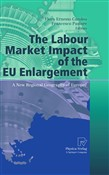 the labour market impact ...