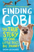 finding gobi (younger rea...