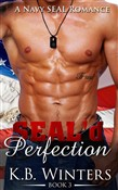 SEAL'd Perfection Book 3