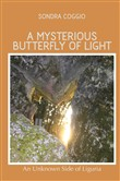 A mysterious butterfly of light