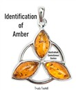 Identification of Amber
