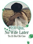 CEO Qin, No Wife Later