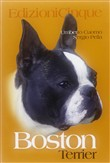 Il Boston Terrier