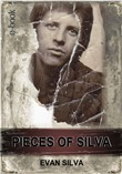 Pieces Of Silva