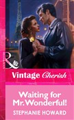Waiting For Mr. Wonderful! (Mills & Boon Vintage Cherish)