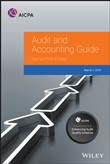 Auditing and Accounting Guide