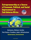 Entrepreneurship as a Source of Economic, Political, and Social Improvement in Sub-Saharan Africa: Botswana, Malawi, Zambia, Five Factors, Freedom, Labor, Infrastructure, Governance, Environment