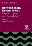 Between texts, beyond words. Intertextuality and translation