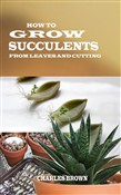 how to grow succulents fr...