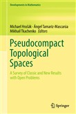 Pseudocompact Topological Spaces