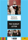 the scarlet letter. level...