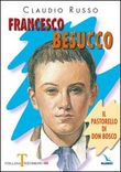 Francesco Besucco. Il pastorello di Don Bosco Vol. 2