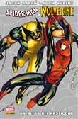 Spider-Man e Wolverine (Marvel Collection)