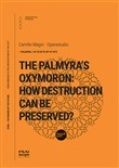 The Palmyra's oxymoron: how destruction can be preserved?