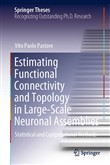 Estimating Functional Connectivity and Topology in Large-Scale Neuronal Assemblies