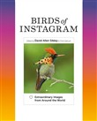 Birds of Instagram