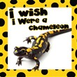 I Wish I were a Chameleon