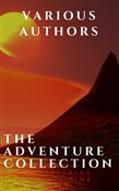 The Adventure Collection: Treasure Island, The Jungle Book, Gulliver's Travels...