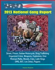 2013 National Gang Report: Street, Prison, Outlaw Motorcycle, Drug Trafficking, Organized Crime, Weapons, Explosives, Eme, Mexican Mafia, Bloods, Crips, Latin Kings, OMG, BCF, Los Zetas, Pagans