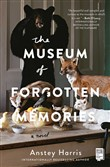 the museum of forgotten m...