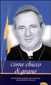 Come chicco di grano. Un ricordo di mons. Luigi Padovese assassinato in Turchia. Con DVD