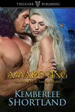 AWAKENING, book one, The ABCs of S-E-X: Love by the Letter series