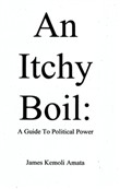 An Itchy Boil: A Guide To Political Power