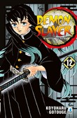 Demon slayer. Kimetsu no yaiba. Vol. 12