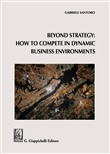 Beyond Strategy: how to compete in dynamic business environments