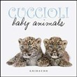Cuccioli Baby Animals