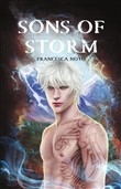 Sons of Storm