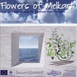 Flowers of Melkart. Buds of tradition along the phoenician maritime routes