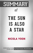 Summary of The Sun is Also a Star