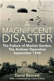 magnificent disaster the ...