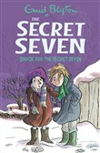Shock For The Secret Seven