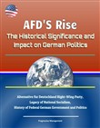 AFD'S Rise: The Historical Significance and Impact on German Politics - Alternative fur Deutschland Right-Wing Party, Legacy of National Socialism, History of Federal German Government and Politics