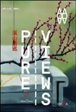 Pure views. Transformations of chinese contemporary art