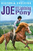 joe and the lightning pon...